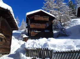 Apartment Oberhäusern, Zermatt