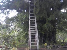 Volcano Horizon Tree House, Lénakel