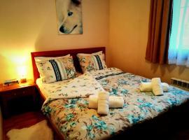 Feel at Home - Cozy Apartment near SKI lift - Bansko, Bansko