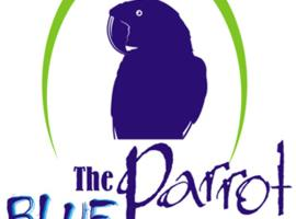 Blue Parrot, Paramaribo
