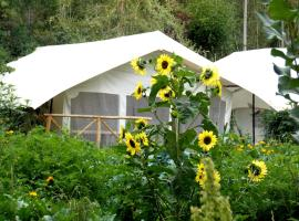 Mystique Meadows Camp, Leh