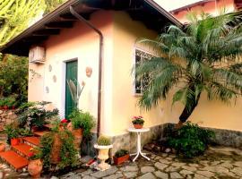 Casetta con giardino, Gizzeria