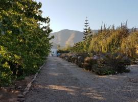 Cabañas en el Valle de Elqui Parcela 6, Vicuña