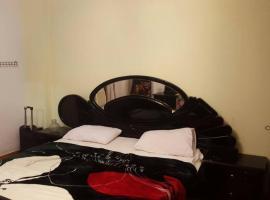 samir morsy lux apartment, Cairo