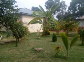 Bwiru Village Homestay- Nansio Ukerewe, Nkunjila