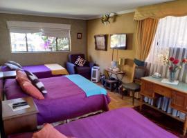Bed & Breakfast Blumen Haus, 圣地亚哥