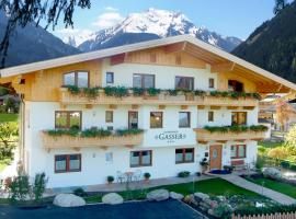 Landhaus Gasser, Mayrhofen