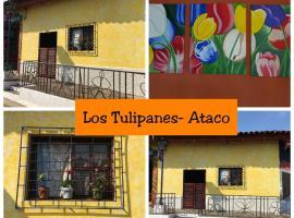 Los Tulipanes-Ataco, Concepción de Ataco