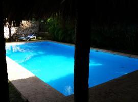 Villa with large pool, near beach, Punta Cana