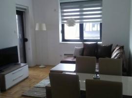 Jelena Anzujska Sunny Apartment, Zlatibor