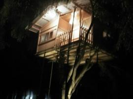 The Tree House VIP, Anuradhapura