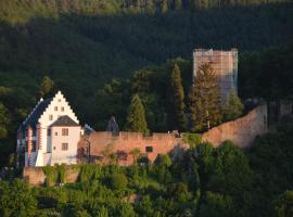 Panorama-Blick Miltenberg, 3 Pers., zentr., am Main, Terrasse, Bootverleih, P