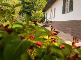 Ferienhaus Vogeljager, Pössnitz
