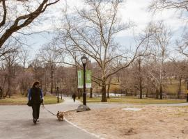 Central Park Overlook, Nowy Jork
