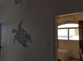 Turtle home, Quseir