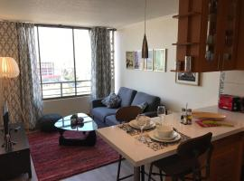 Bellas Artes apartment, Santiago