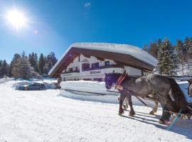 Ferienwohnungen Haus Wildsee, Seefeld in Tirol