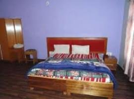Hotel Shanti Palace, Leh