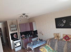 Apartment on Molodezhnaya 78, Chimki