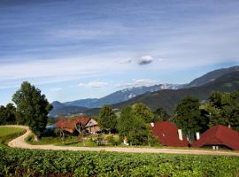 Tourist Farm Visočnik, Ljubno