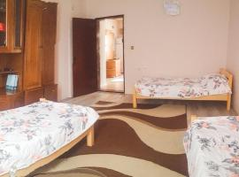 City center Apartment, Prizren