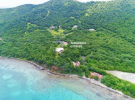 Tamarindo Estates Beach Apts., Culebra