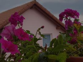 Casa Lili, Haţeg