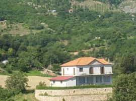 Villa BUSH, Librazhd