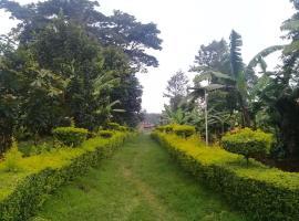Foo Campsite, Barangata