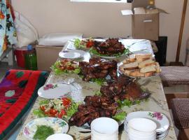 Aydyn-Kul Guest House, Toguz-Bulak