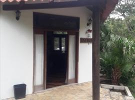 Whithe house, Iguana
