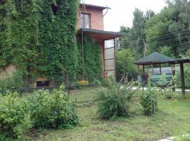 гостевой дом в Черкизово, Chelyuskintsy