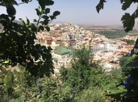 Maison Amina, Moulay Idriss
