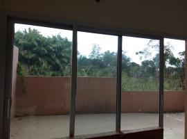 Flamand rose, Libreville