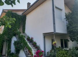 Todorov House, Negotino