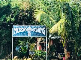 Mush Rooms Backpacker Hostel, Duong Dong