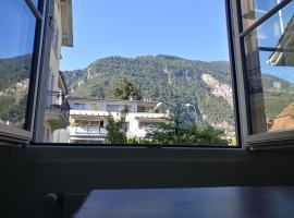 AUSFinn-Apartments, OutBackGarden 1, Interlaken