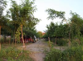 Vila Peshkatari, Skataj