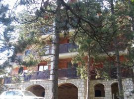 Apartmani Sredojevic, Šljivovica