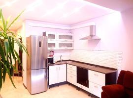 Apartment on Lyzhniy Pereulok 8, St. Petersburg
