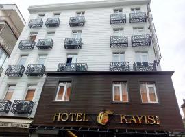 HOTEL KAYISI, Stambuł