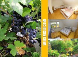 An der Weinrebe das Ferienhaus in Bad Hersfeld