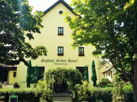 Hotel-Landgasthof Grüner Baum - Dittigheim