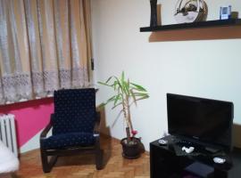 Apartment netx to Boulevard Kralja Aleksandra, Belgrado