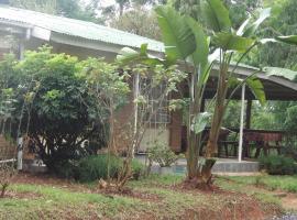 PineTree Lodge, Katoto