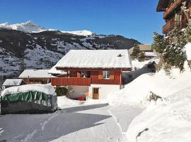 Grindelwald Villa Sleeps 6 WiFi, Grindelwald