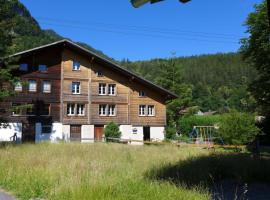 Innertkirchen Villa Sleeps 12 WiFi, Innertkirchen