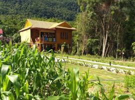 Lake House, Duong Dong