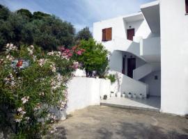Irini Studios, Troulos
