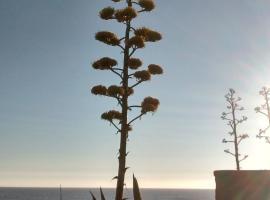 Las Golondrinas 40, comuna El Quisco, Isla Negra